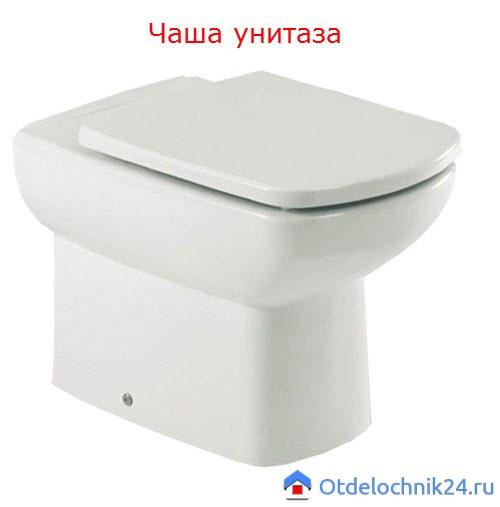 chasha-unitaza